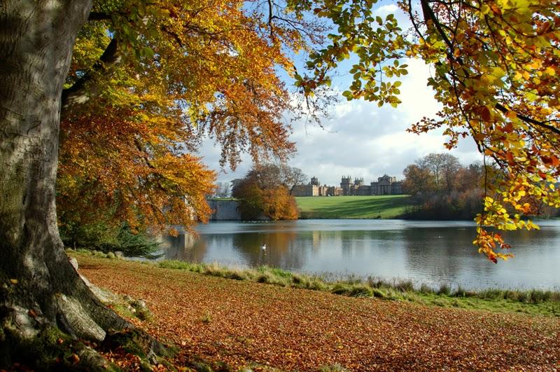 Autumn scene Blenheim