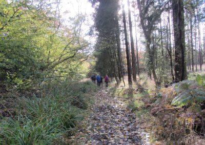 Stowe Walk cropped